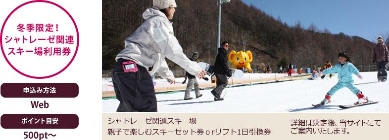 利用できるスキー施設