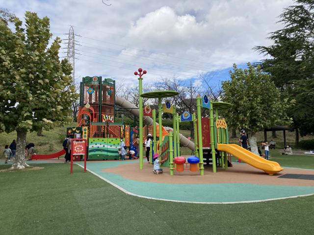 大池公園新しい遊具