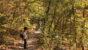 昭和の森の小道